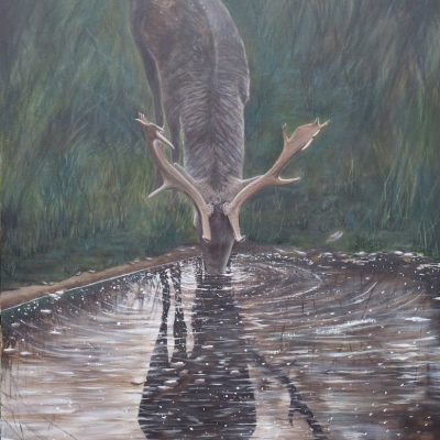 As the deer pants for water by Rebecca Gallop